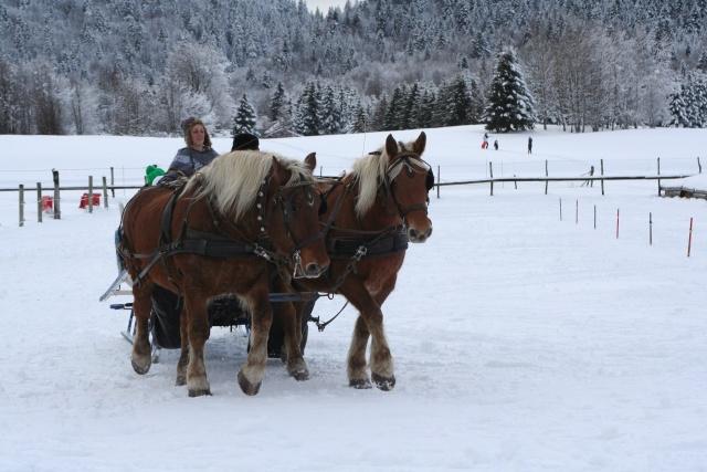 30 décembre ski-joering à la féclaz (73) Img_6110