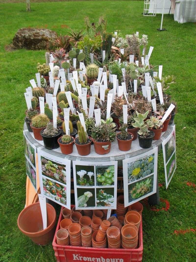 Bonjour à tous et informations sur une foire aux plantes - Page 2 Montdi12