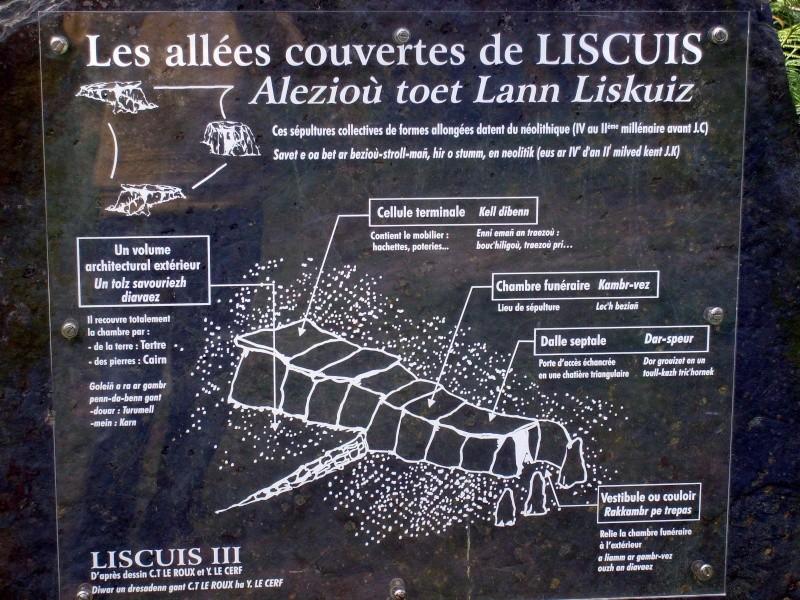 Allées couvertes de Liscuis Pannea10