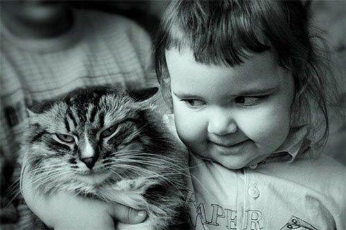 Смешные картинки и фото животных Post-110