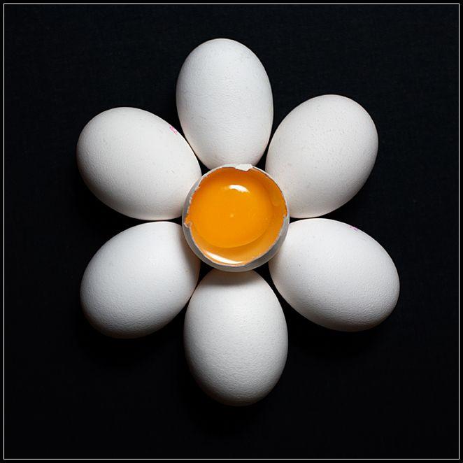 Buongiorno a tutti - Pagina 2 Egg_fl10
