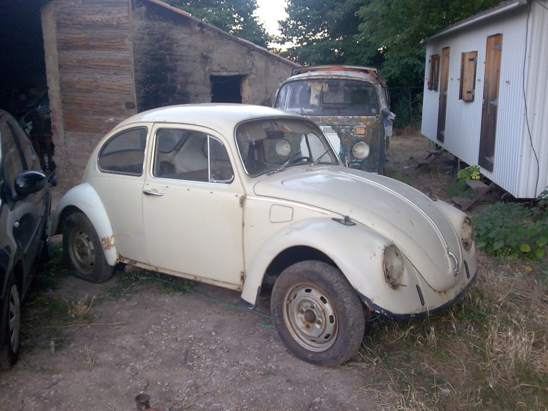 Rusty Herbie Photo010