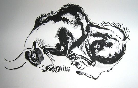 Canard (dessin) Alta10
