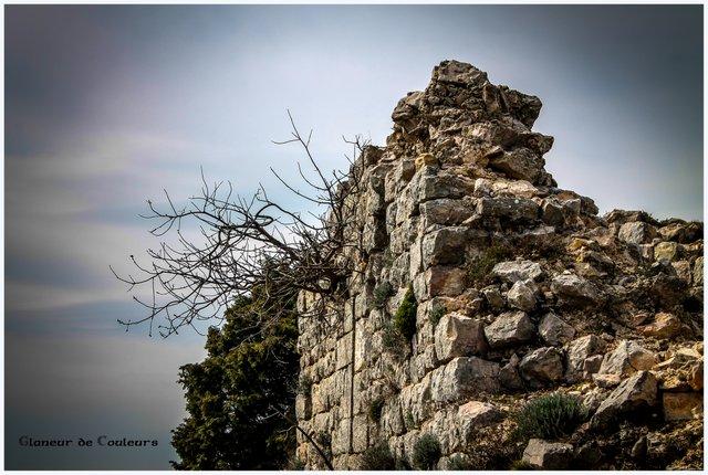 Château de Saint Sauveur, Rocbaron Castel25