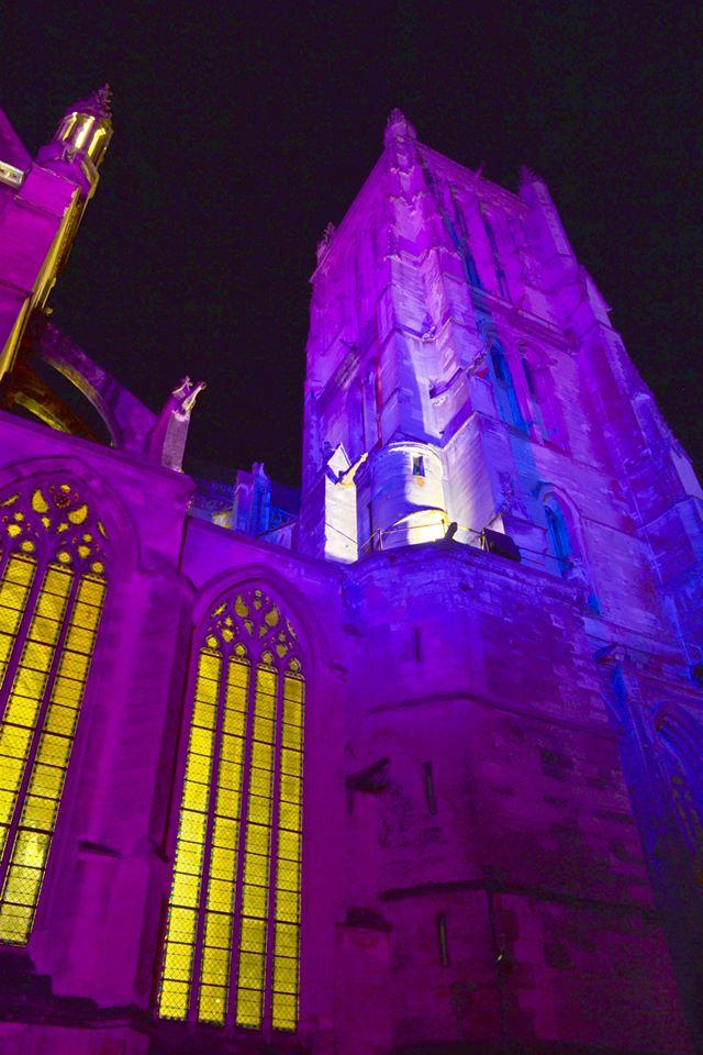 Illumination de la cité Episcopale (photos et critique) 10300010
