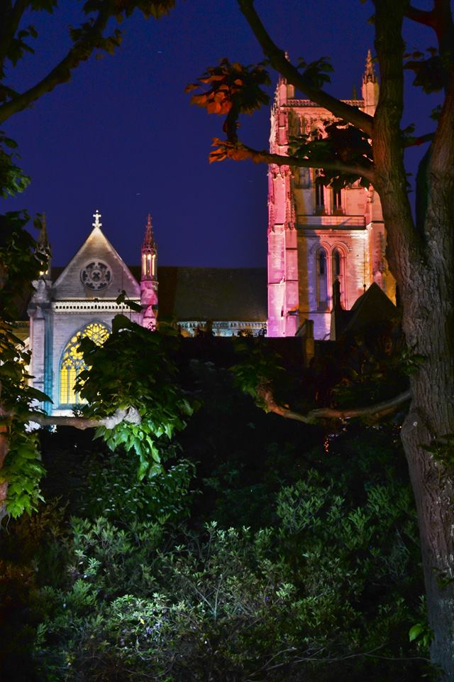 Illumination de la cité Episcopale (photos et critique) 10343610