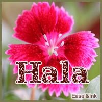 Hala Hala10