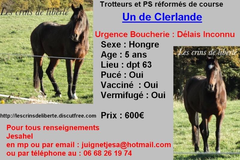 Un de Clerlande, TF et Émilie (Mars 2014) - Page 6 Sans_t19