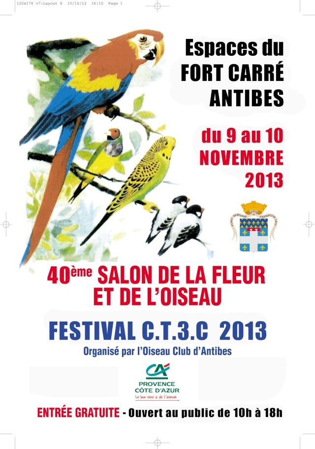 Festival CT3C Antibes - 9 et 10 nov 2013 Affich10