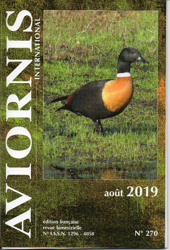 AVIORNIS FRANCE. - Page 5 Img10611