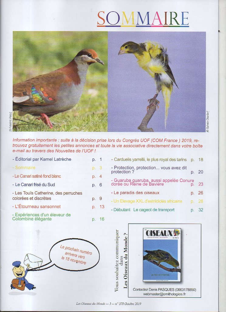 L'UOF. - Page 2 Img85411