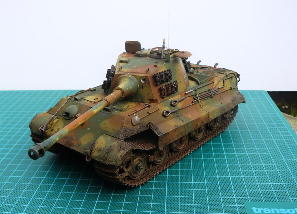 tiger - Tiger II P1050919