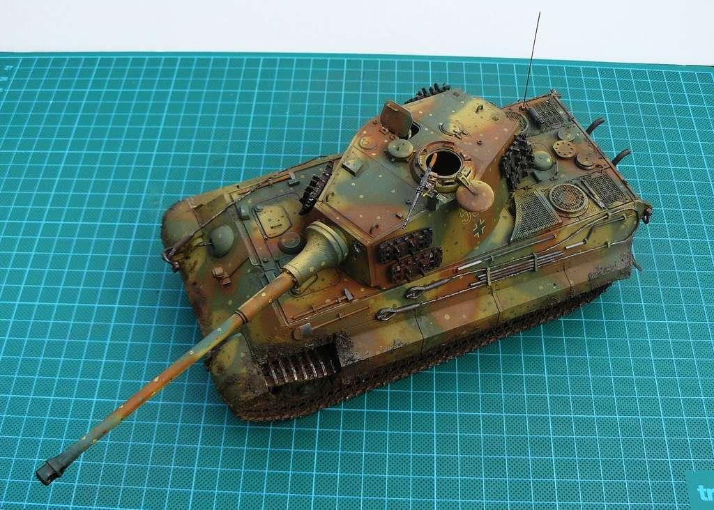 tiger - Tiger II P1050920