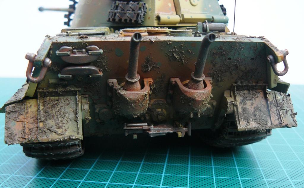 tiger - Tiger II P1050922