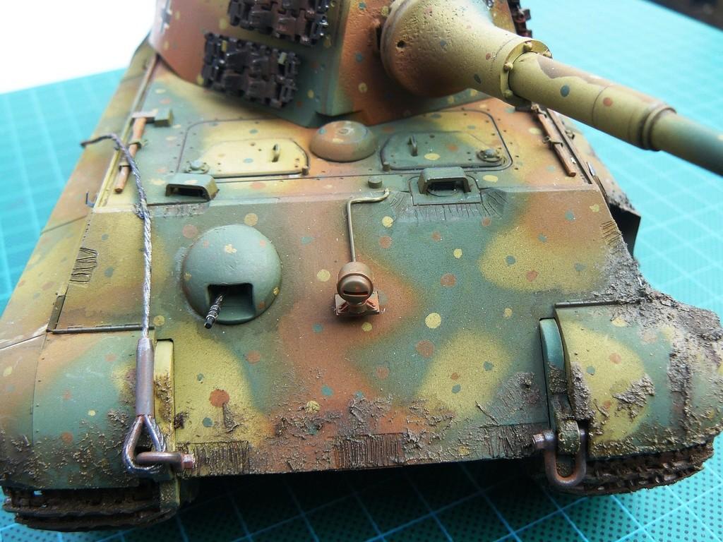 tiger - Tiger II P1050924