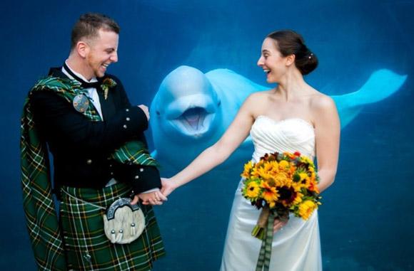 Những đám cưới 'nhớ đời' 16400b10