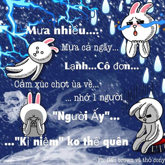 Chuyện Gấu Brown và thỏ Cony 31427010