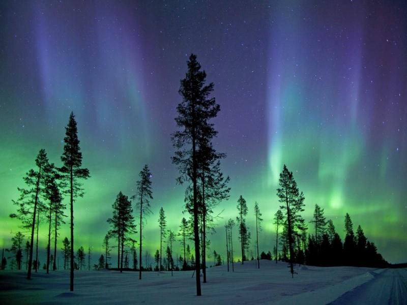 17 bức ảnh khoa học đẹp nhất năm 2013  4e34a811