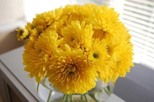 Cắm hoa ngày Tết mang lại may mắn Hoa-cu10