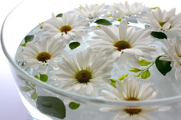 Cắm hoa ngày Tết mang lại may mắn Hoa-cu11