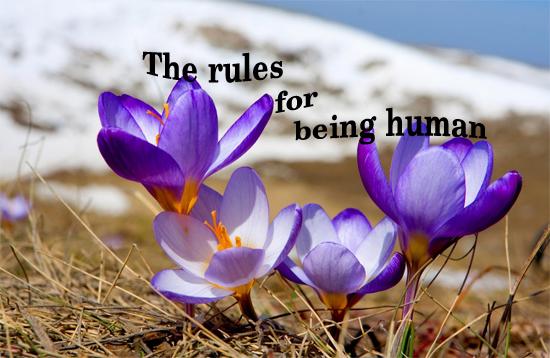 10 nguyên tắc của cuộc đời  Hoa13-10