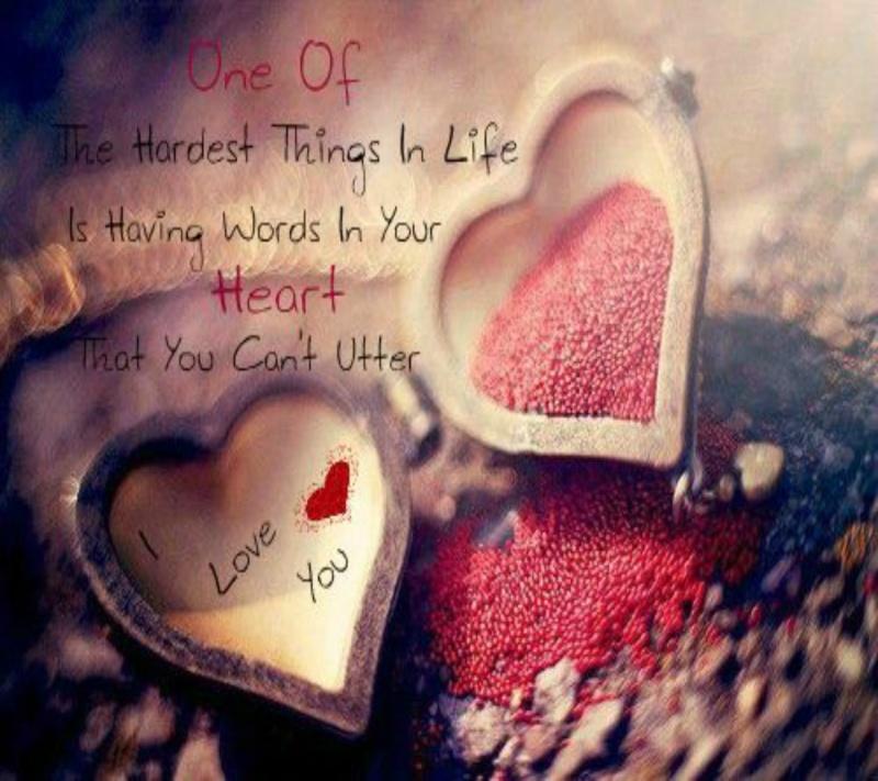 Tình yêu kỳ diệu của 12 cung sao năm 2014 Love-410