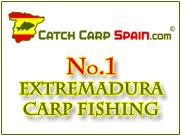 Carp Anglers Club of Ireland - Portal Cc_ban10