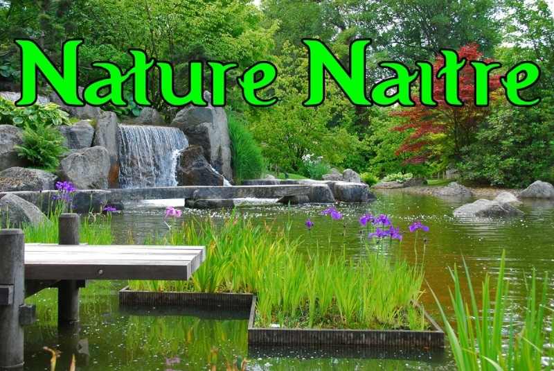 NATURE NAITRE