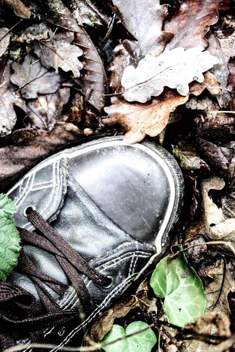 Un pied de forêt pas comme les autres ... Simple11
