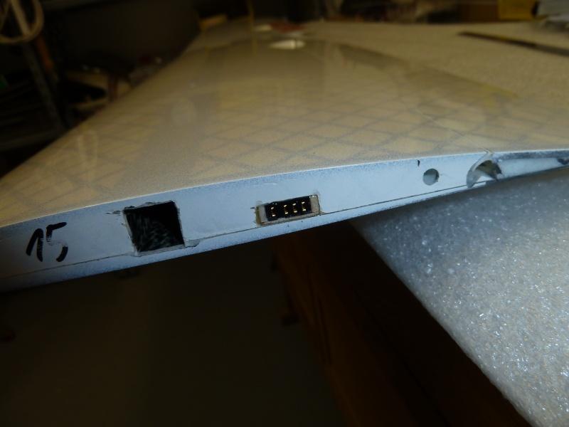 ELECTRA X de MIBO - Page 2 P1020413
