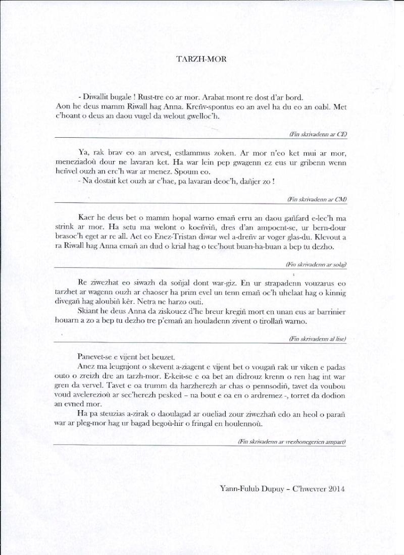 Skrivadeg 2014 - Dictée en Breton 2014 Tarzh-10