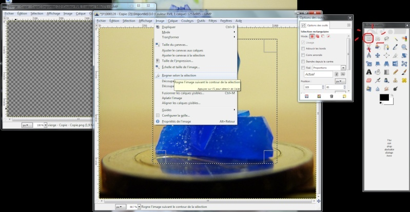 Fabriquer un icône avec une photo avec Gimp Icone310