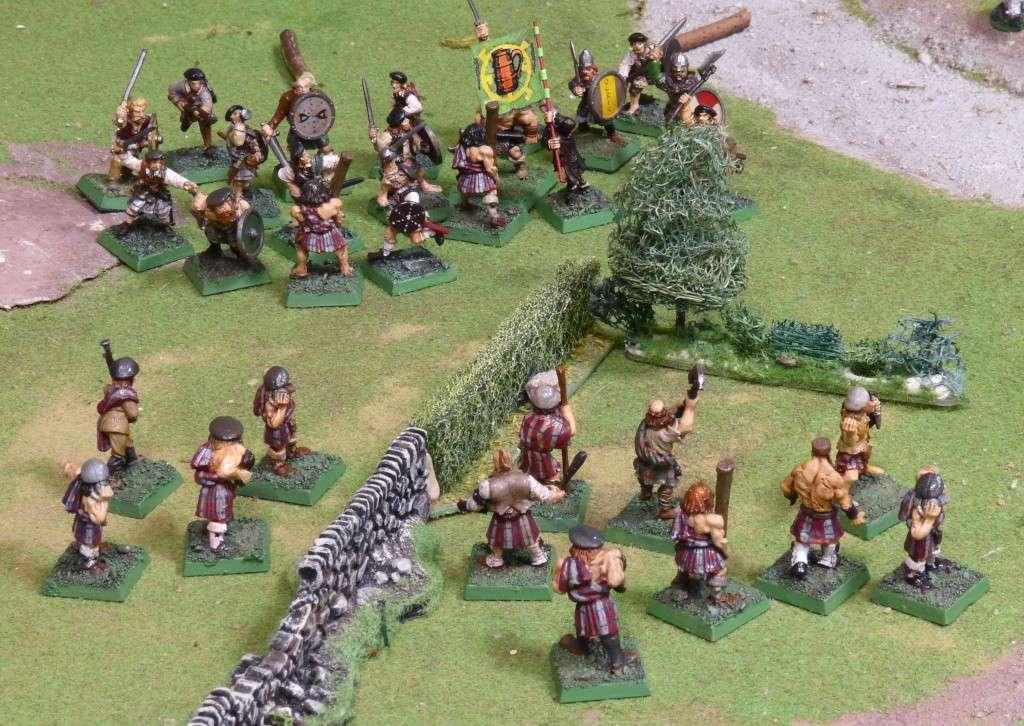 Warhammer Fantasy, Galerie de Batailles - Page 4 P1000818