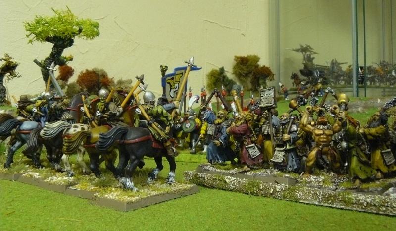 Warhammer Fantasy, Galerie de Batailles - Page 3 P1210012
