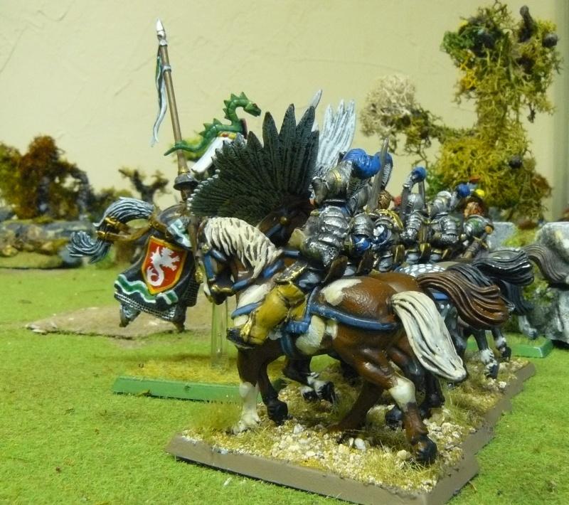 Warhammer Fantasy, Galerie de Batailles - Page 3 P1210013