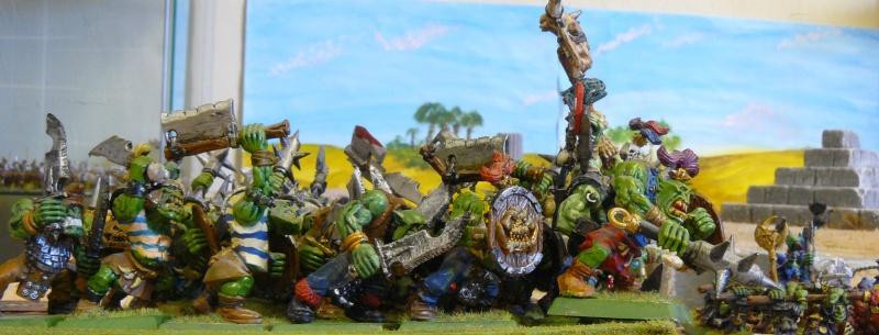 Warhammer Fantasy, Galerie de Batailles - Page 3 P1210124