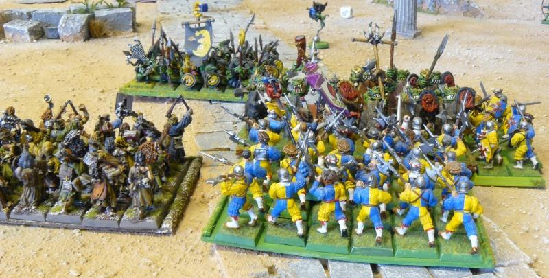 Warhammer Fantasy, Galerie de Batailles - Page 3 P1210129