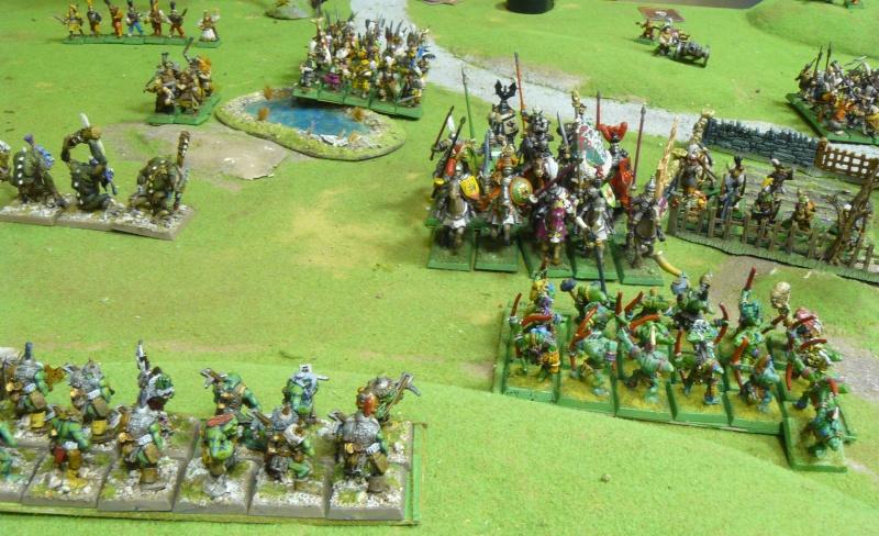Warhammer Fantasy, Galerie de Batailles - Page 4 P1210140