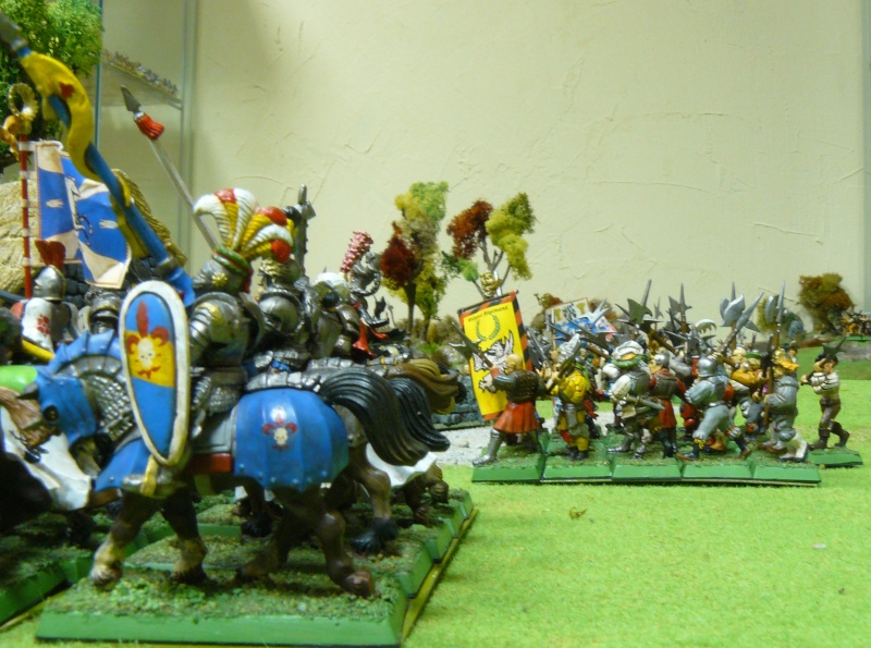 Warhammer Fantasy, Galerie de Batailles - Page 4 P1210142