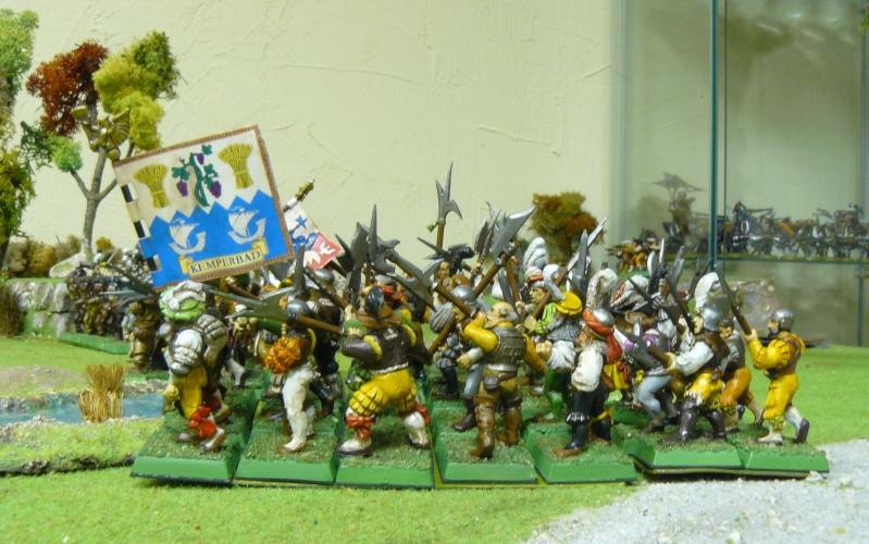 Warhammer Fantasy, Galerie de Batailles - Page 4 P1210144