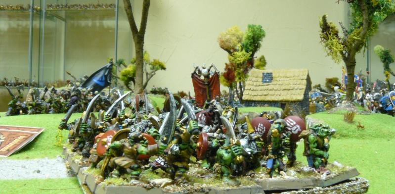 Warhammer Fantasy, Galerie de Batailles - Page 4 P1210145