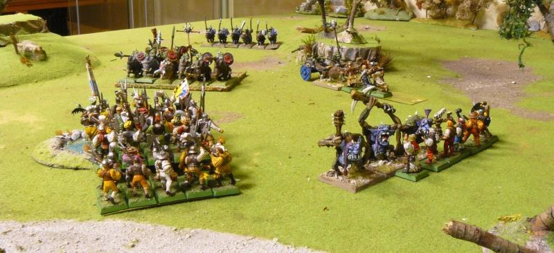 Warhammer Fantasy, Galerie de Batailles - Page 4 P1210149