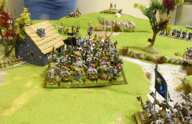 Warhammer Fantasy, Galerie de Batailles - Page 4 P1210150