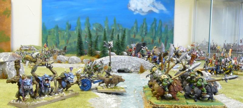 Warhammer Fantasy, Galerie de Batailles - Page 4 P1210162