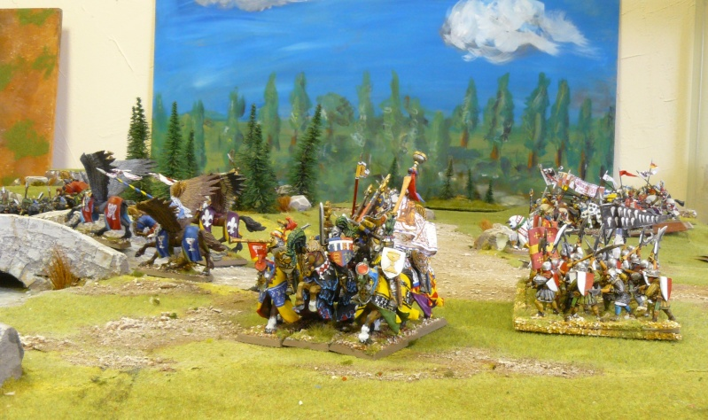 Warhammer Fantasy, Galerie de Batailles - Page 4 P1210163