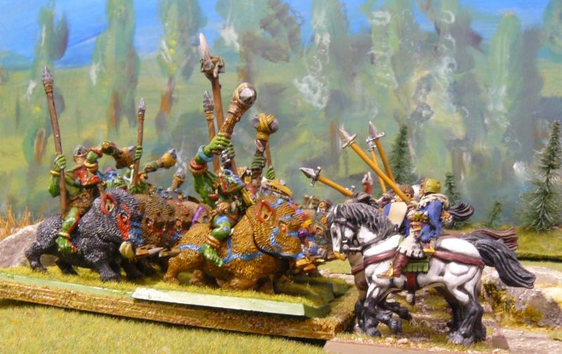 Warhammer Fantasy, Galerie de Batailles - Page 4 P1210166