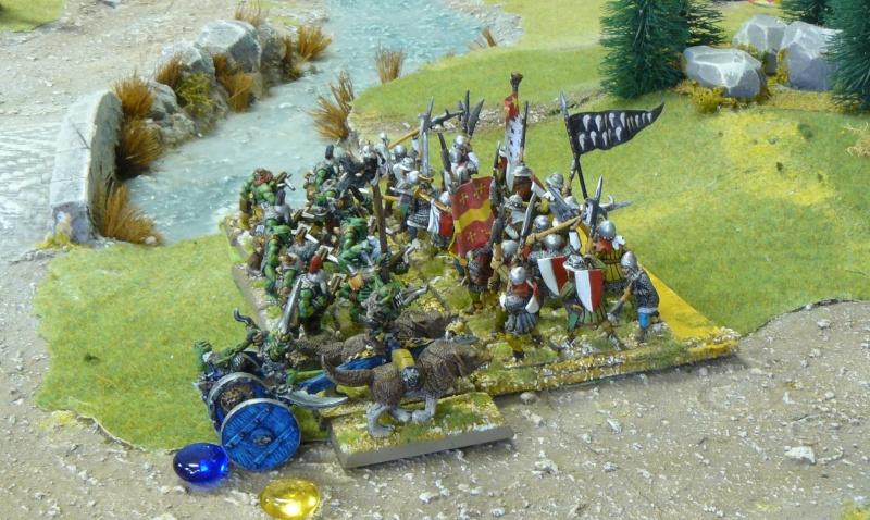 Warhammer Fantasy, Galerie de Batailles - Page 4 P1210170