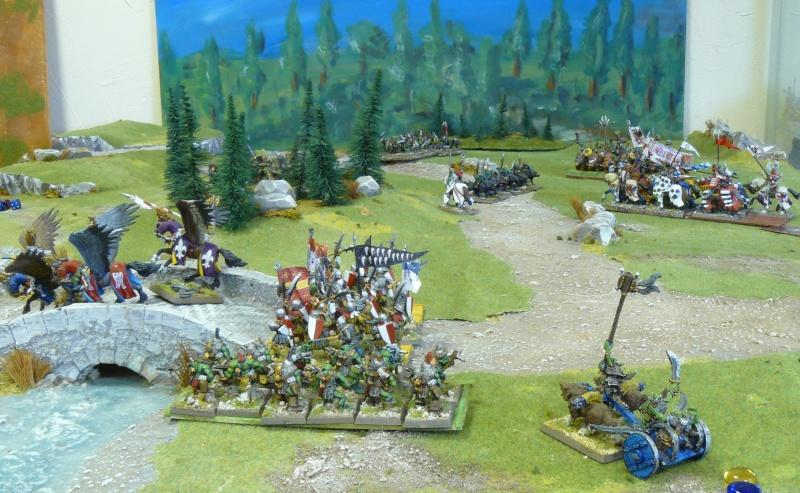 Warhammer Fantasy, Galerie de Batailles - Page 4 P1210171