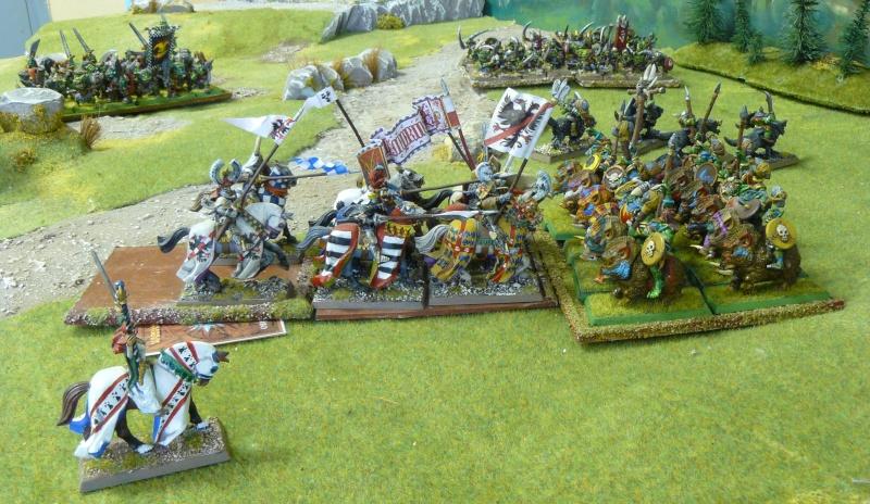 Warhammer Fantasy, Galerie de Batailles - Page 4 P1210173