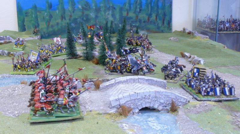 Warhammer Fantasy, Galerie de Batailles - Page 4 P1210225